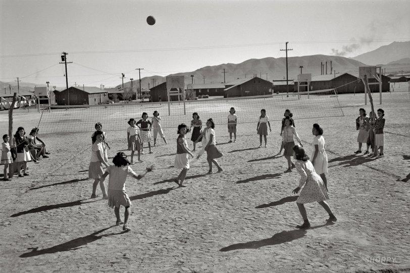 Manzanar Volleyball: 1943