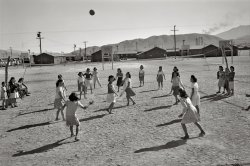 Manzanar Volleyball: 1943