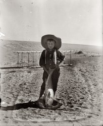 Kitty Hawk Drum Fish: 1900