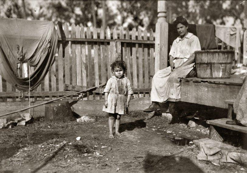 The Apprentice: 1911