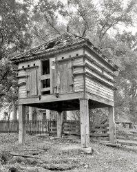 The Birdhouse: 1944