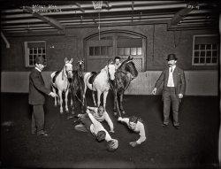 Horseketball: 1908