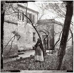 Negro Woman in Bonnet: 1865