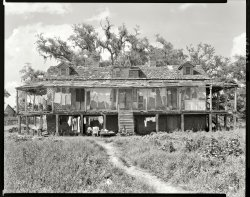 The Rookery: 1938