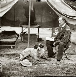 Dog of War: 1862