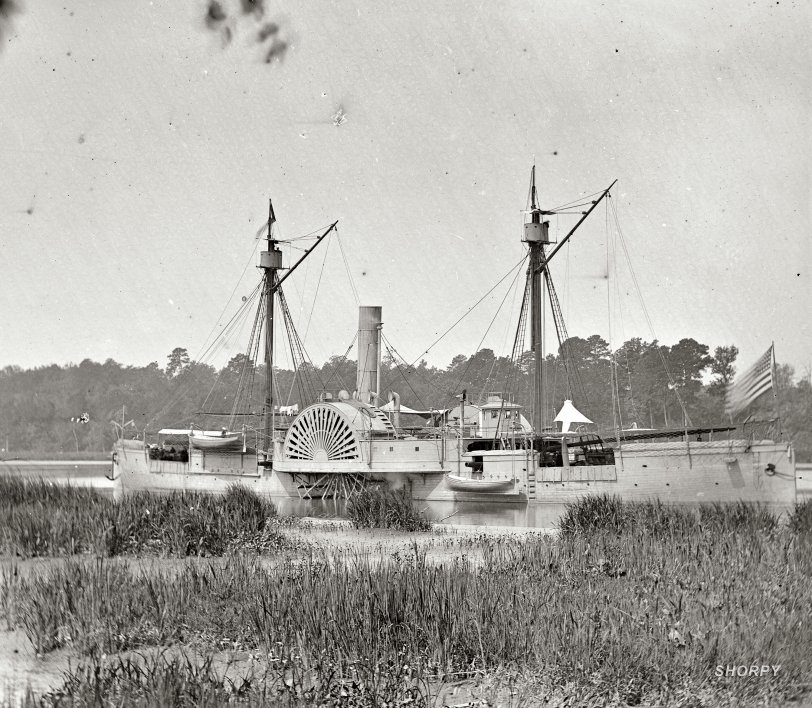 Swamp Gator: 1864