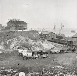 Supply Train: 1865