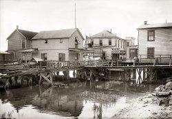 Boats Bait Beer: 1910