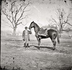 Top Dog: 1865