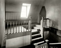 Wye Plantation: 1936