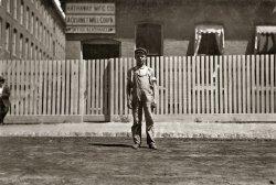 Picket Fences: 1911