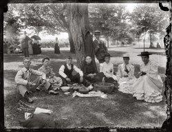 Picnic at Marshall Hall: 1893