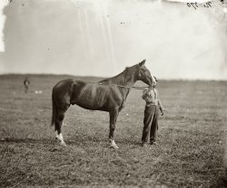 Old Baldy: 1863