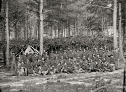 Company D: 1864