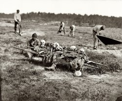 Cold Harbor: 1865