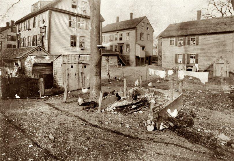 Bedbug Alley: 1912