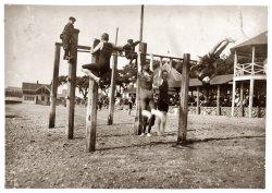Horseplay: 1916