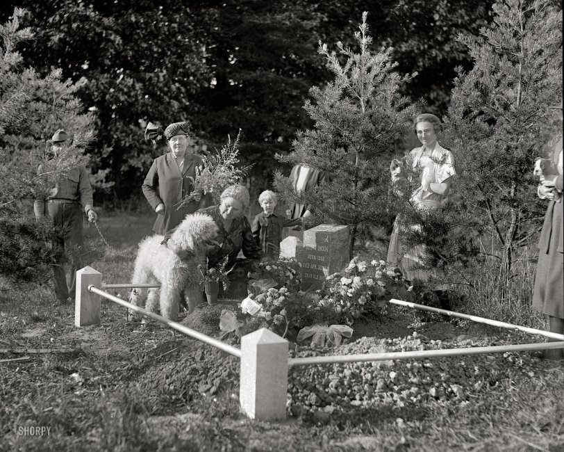 Dog Funeral: 1921