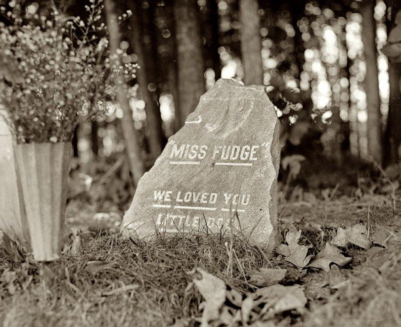 Miss Fudge: 1921
