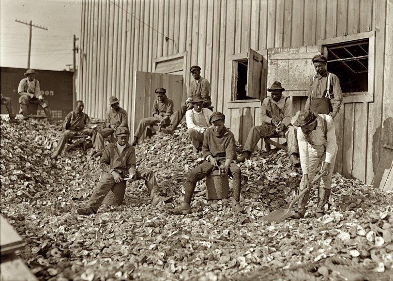 Apalachicola Shuckers: 1909