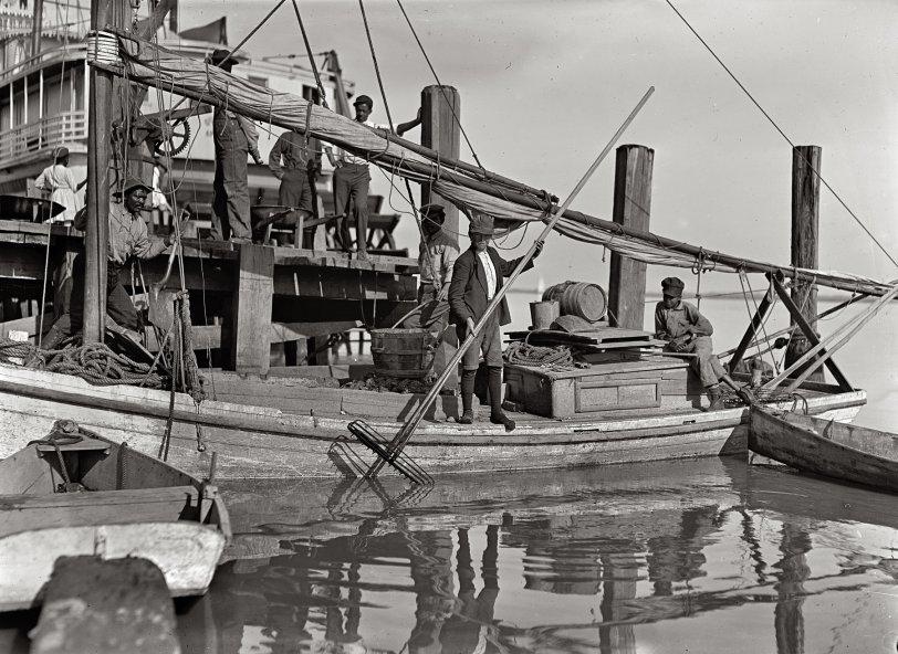 Oysterboy: 1909