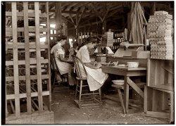 Cigar Box Girls: 1909