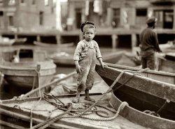 Sea Urchin: 1909