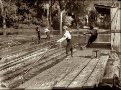 River-Boy: 1913