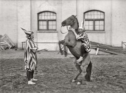Hanging On: 1916