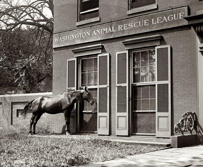 Knock, Knock: 1922
