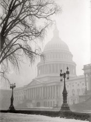 Washington Winter: 1917