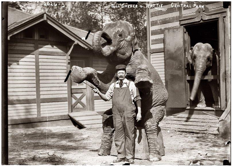Bill and Hattie: 1922