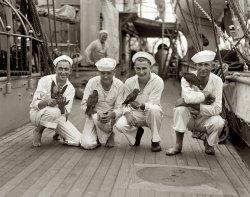 Maritime Mascots: 1923