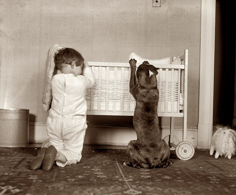 And a Bone for Fido: 1923