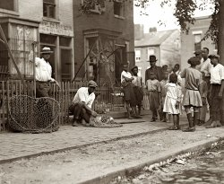 Dog Catchers: 1924