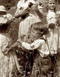 Happy Days: 1902