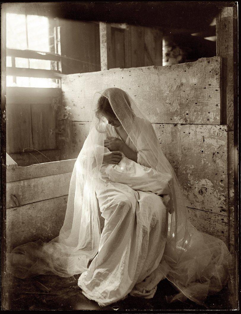 The Manger: 1901