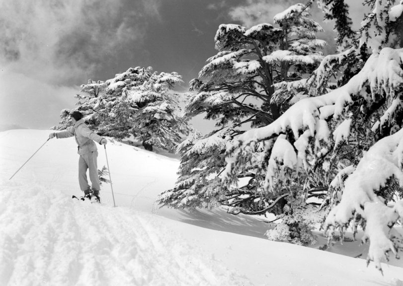 Skiing in the Cedars: 1946