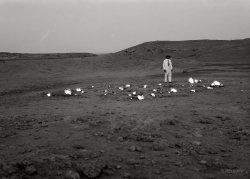Burning Sands: 1932
