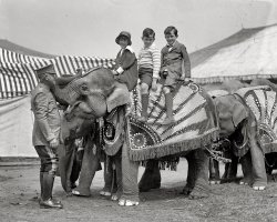 Elephant Walk: 1925