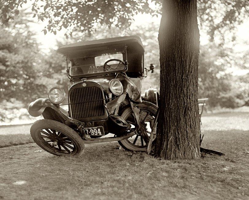 Tree 1, Car 0