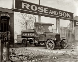 Rose and Son: 1925