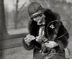 This Little Piggy: 1925