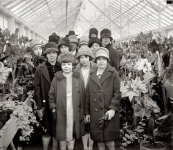 Flower Girls: 1927