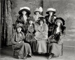 Alpha Girls: 1912