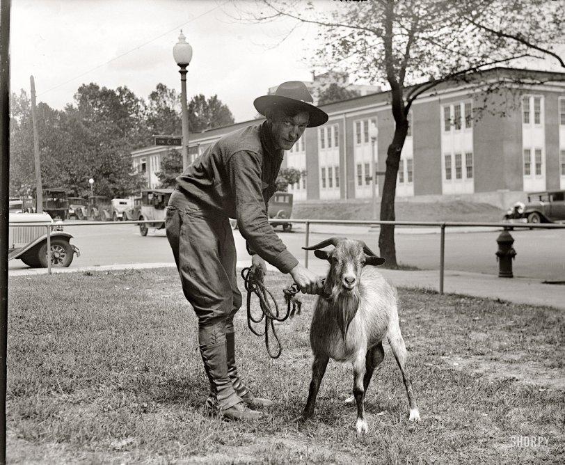 Capricorns: 1929