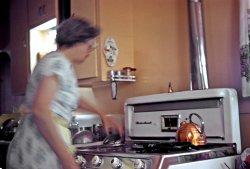 Salmon Kitchen In Use