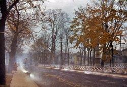 Leaf Smoke: 1940