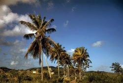 St. Croix: 1941