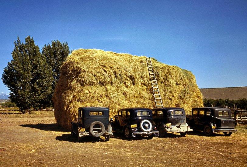 Delta County: 1940